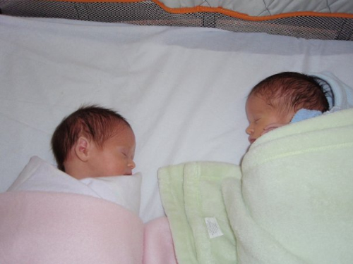 twins sharing a cot