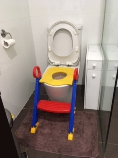 toilet training seat for twins