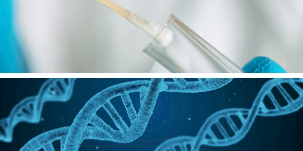 DNA testing for zygosity