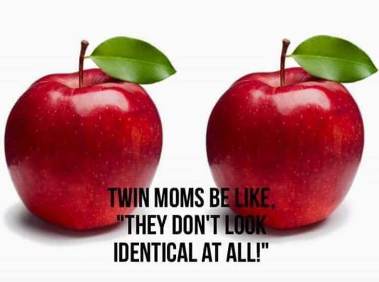 differences between identical twins
