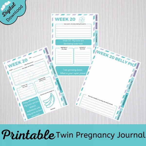 twin pregnancy journal printable